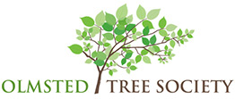 Olmsted Tree Society logo